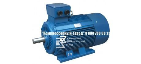 Электродвигатель АИР355М6